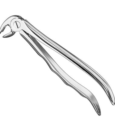 Extracting Forceps, Anat